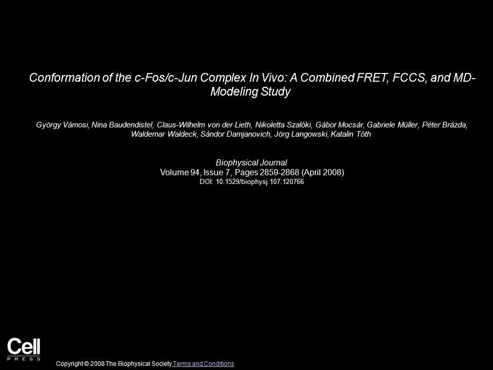 Conformation of the c-Fos/c-Jun Complex In Vivo: A Combined FRET, FCCS, and MD- Modeling Study György Vámosi, Nina Baudendistel, Claus-Wilhelm von der Lieth, Nikoletta Szalóki, Gábor Mocsár, Gabriele Müller, Péter Brázda, Waldemar Waldeck, Sándor Damjanovich, Jörg Langowski, Katalin Tóth Biophysical Journal Volume 94, Issue 7, Pages 2859-2868 (April 2008) DOI: 10.1529/biophysj.107.120766 Copyright © 2008 The Biophysical Society Terms and Conditions Terms and Conditions