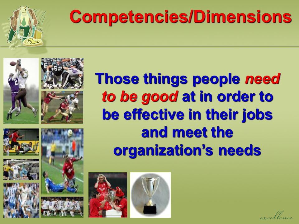 Competencies/Dimensions Those things people need to be good at in order to be effective in their jobs and meet the organization's needs