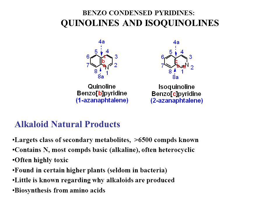 BENZO CONDENSED PYRIDINES: QUINOLINES AND ISOQUINOLINES Alkaloid Natural Products Largets class of secondary metabolites, >6500 compds known Contains N, most compds basic (alkaline), often heterocyclic Often highly toxic Found in certain higher plants (seldom in bacteria) Little is known regarding why alkaloids are produced Biosynthesis from amino acids