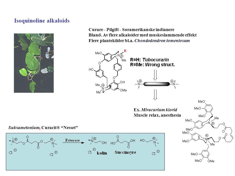 Isoquinoline alkaloids Curare - Pilgift - Søramerikanske indianere Bland. Av flere alkaloider med muskeslammende effekt Flere plantekilder bl.a. Chond