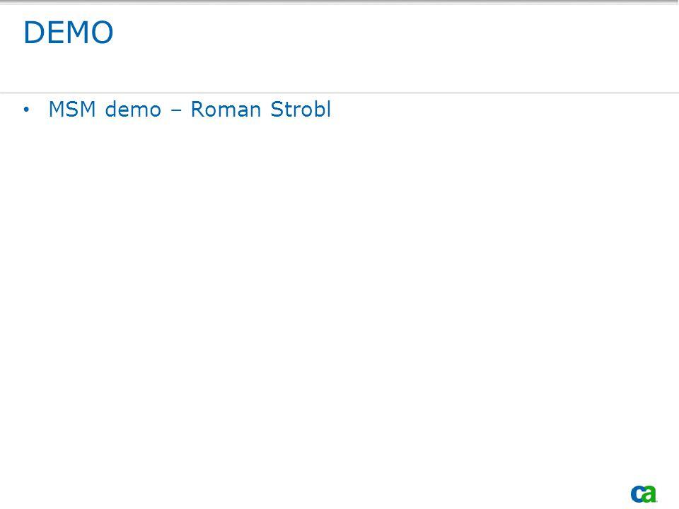 DEMO MSM demo – Roman Strobl