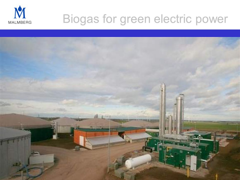 Biogas for green electric power