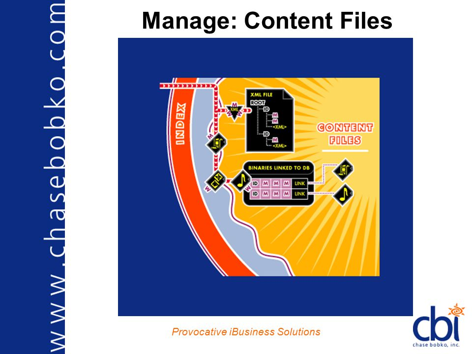 Provocative iBusiness Solutions Manage: Content Files
