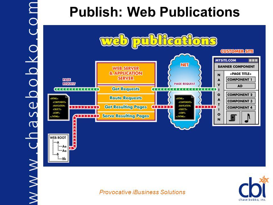 Provocative iBusiness Solutions Publish: Web Publications