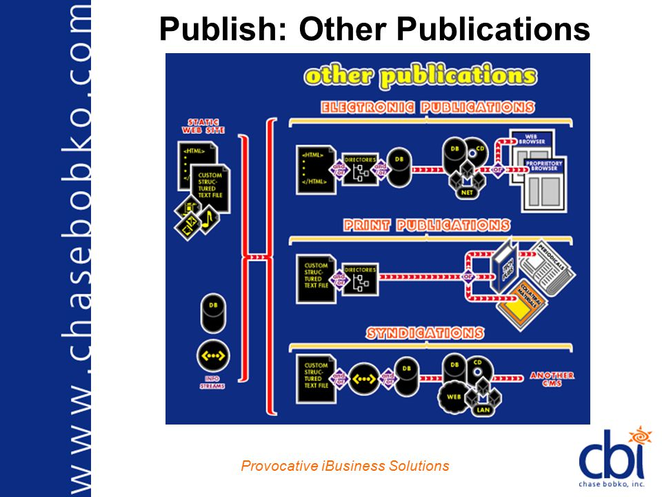 Provocative iBusiness Solutions Publish: Other Publications