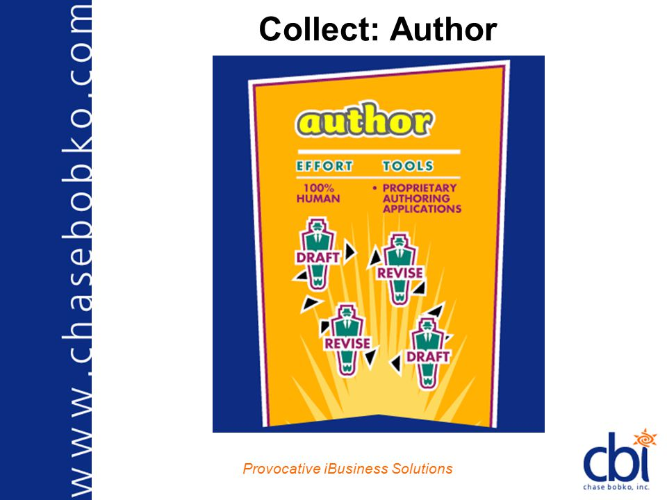 Provocative iBusiness Solutions Collect: Acquire