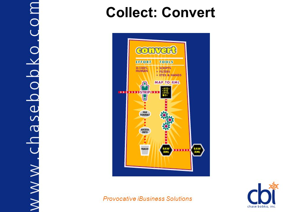 Provocative iBusiness Solutions Enterprise System