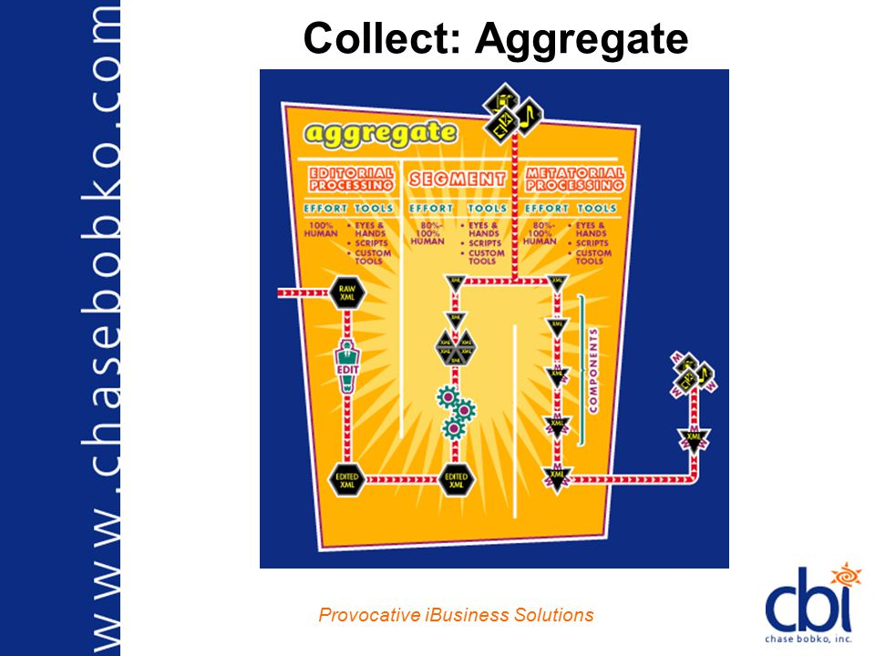 Provocative iBusiness Solutions Collect: Aggregate