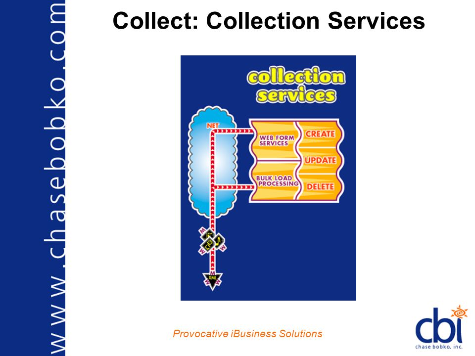 Provocative iBusiness Solutions Collect: Collection Services
