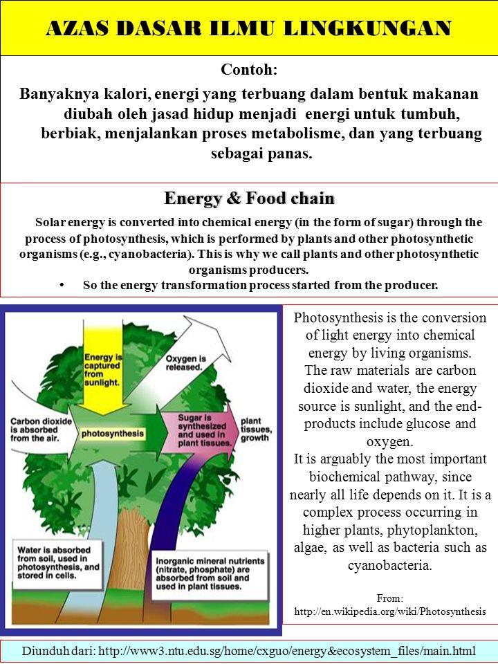 AZAS DASAR ILMU LINGKUNGAN Contoh: Banyaknya kalori, energi yang terbuang dalam bentuk makanan diubah oleh jasad hidup menjadi energi untuk tumbuh, berbiak, menjalankan proses metabolisme, dan yang terbuang sebagai panas.