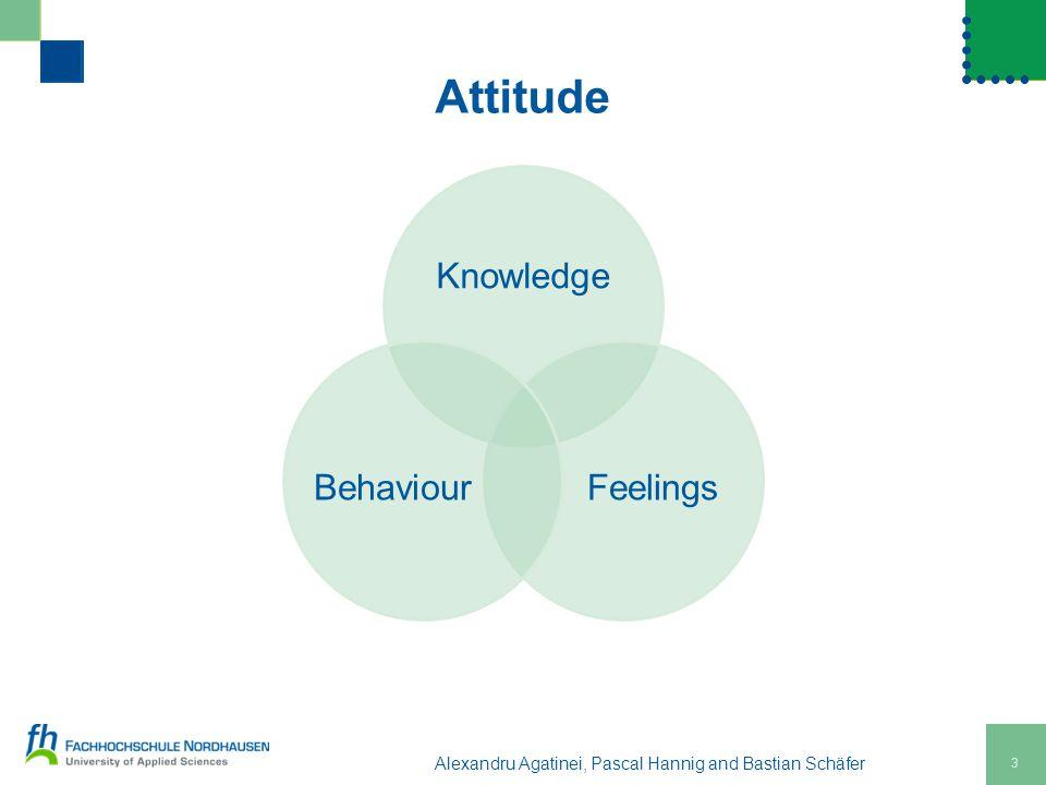 3 Alexandru Agatinei, Pascal Hannig and Bastian Schäfer Knowledge FeelingsBehaviour Attitude
