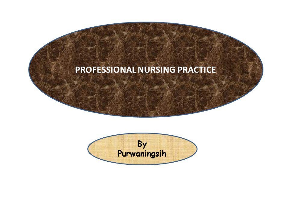 Professional Roles & Responsibilities Autonomy & Accountability Caregiver Client Advocate Educator Manager/Clinical Decision Maker Communicator Collaborator Career Development