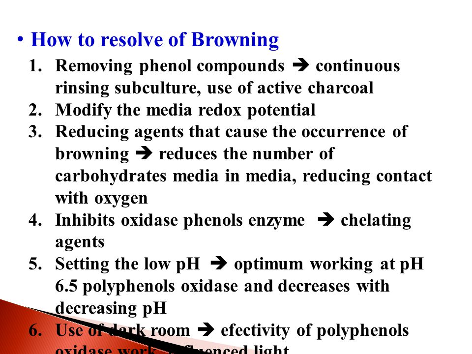 How to resolve of Browning 1.Removing phenol compounds  continuous rinsing subculture, use of active charcoal 2.Modify the media redox potential 3.Re