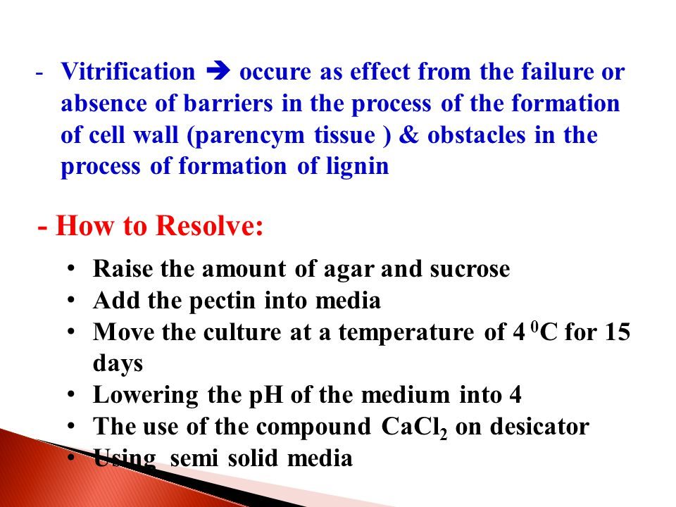 -Vitrification  occure as effect from the failure or absence of barriers in the process of the formation of cell wall (parencym tissue ) & obstacles in the process of formation of lignin - How to Resolve: Raise the amount of agar and sucrose Add the pectin into media Move the culture at a temperature of 4 0 C for 15 days Lowering the pH of the medium into 4 The use of the compound CaCl 2 on desicator Using semi solid media