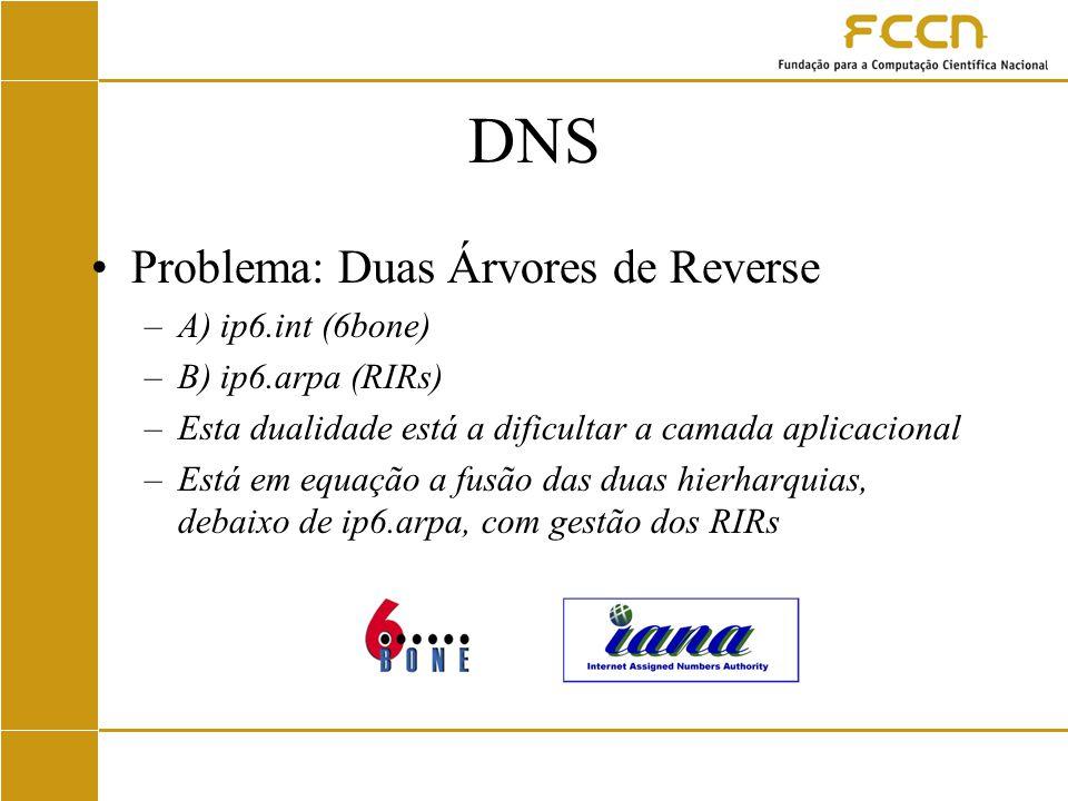 DNS Problema: Duas Árvores de Reverse –A) ip6.int (6bone) –B) ip6.arpa (RIRs) –Esta dualidade está a dificultar a camada aplicacional –Está em equação a fusão das duas hierharquias, debaixo de ip6.arpa, com gestão dos RIRs