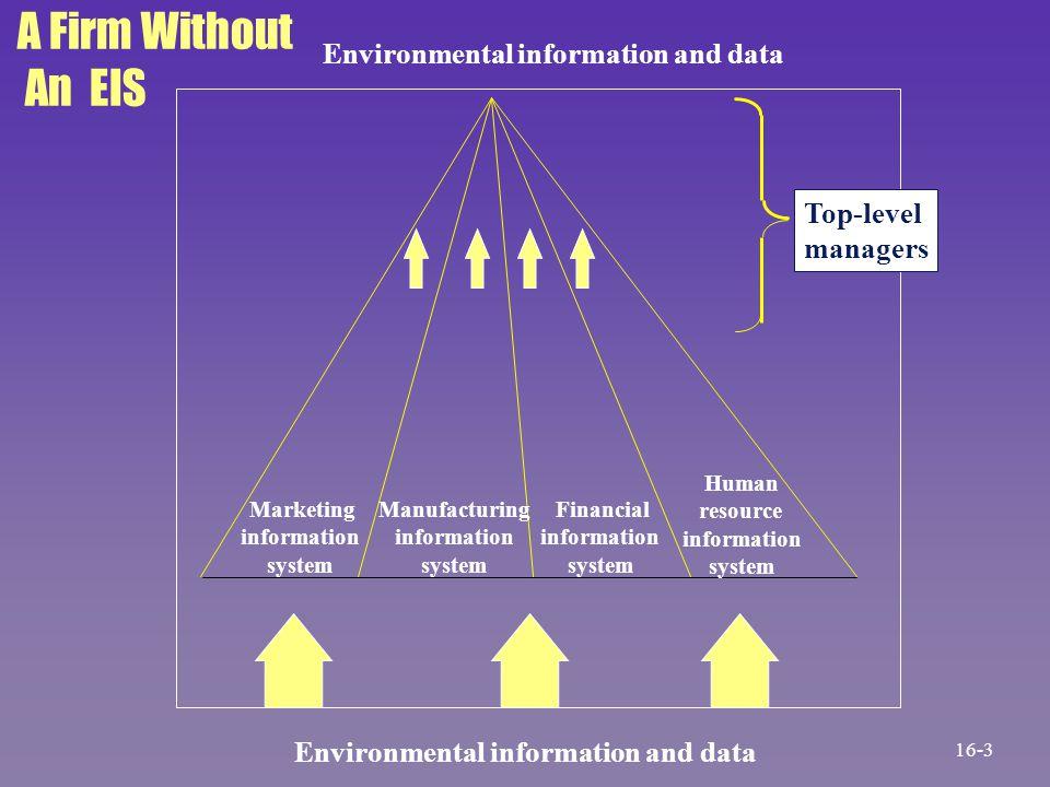 Marketing information system Manufacturing information system Financial information system Human resource information system Environmental information
