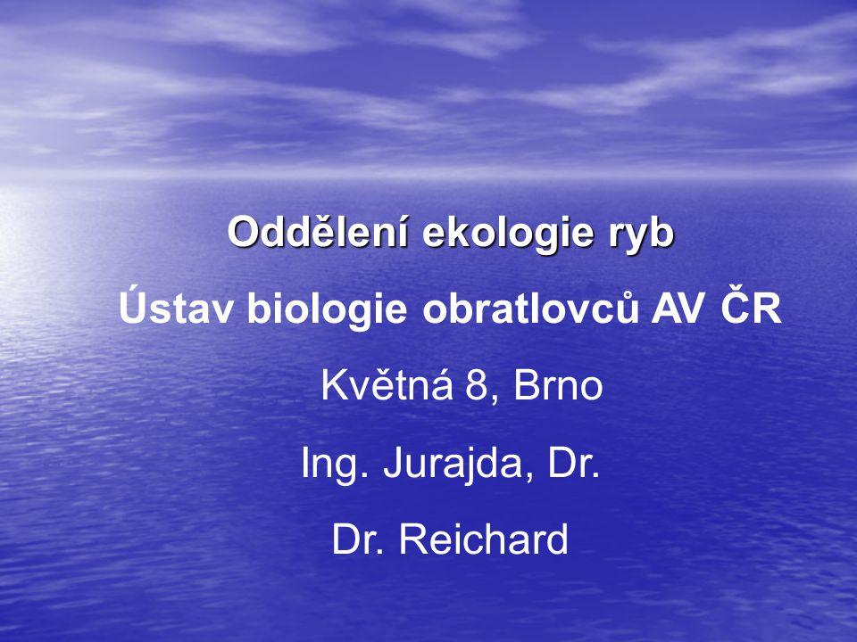 Oddělení ekologie ryb Ústav biologie obratlovců AV ČR Květná 8, Brno Ing. Jurajda, Dr. Dr. Reichard