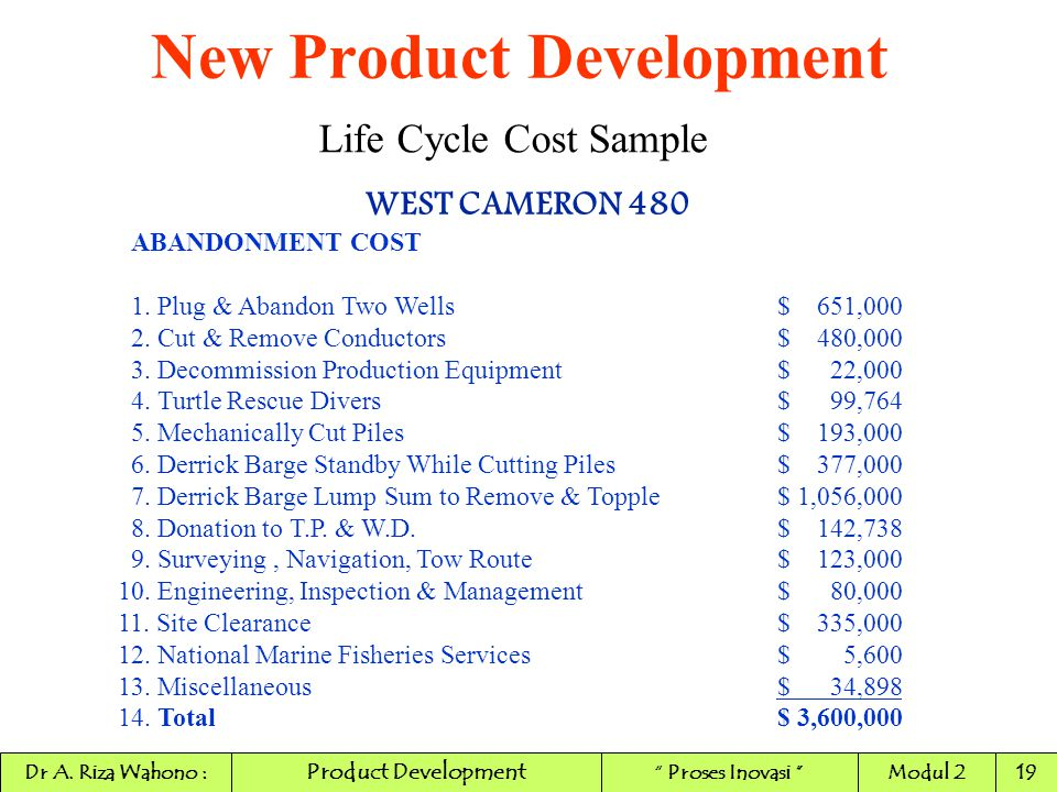 New Product Development Life Cycle Cost Sample WEST CAMERON 480 ABANDONMENT COST 1. Plug & Abandon Two Wells$ 651,000 2. Cut & Remove Conductors$ 480,