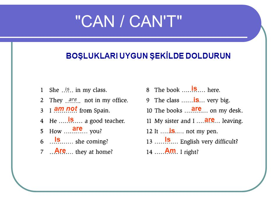 CAN / CAN T BOŞLUKLARI UYGUN ŞEKİLDE DOLDURUN am not is are Is Are is are is Is Am