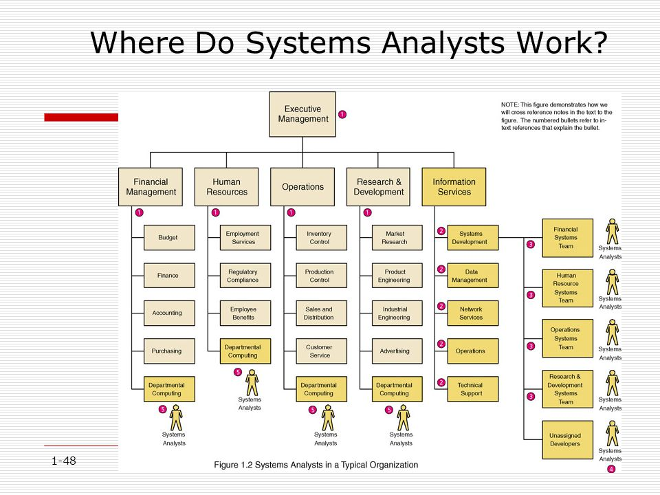 1-48 Where Do Systems Analysts Work?