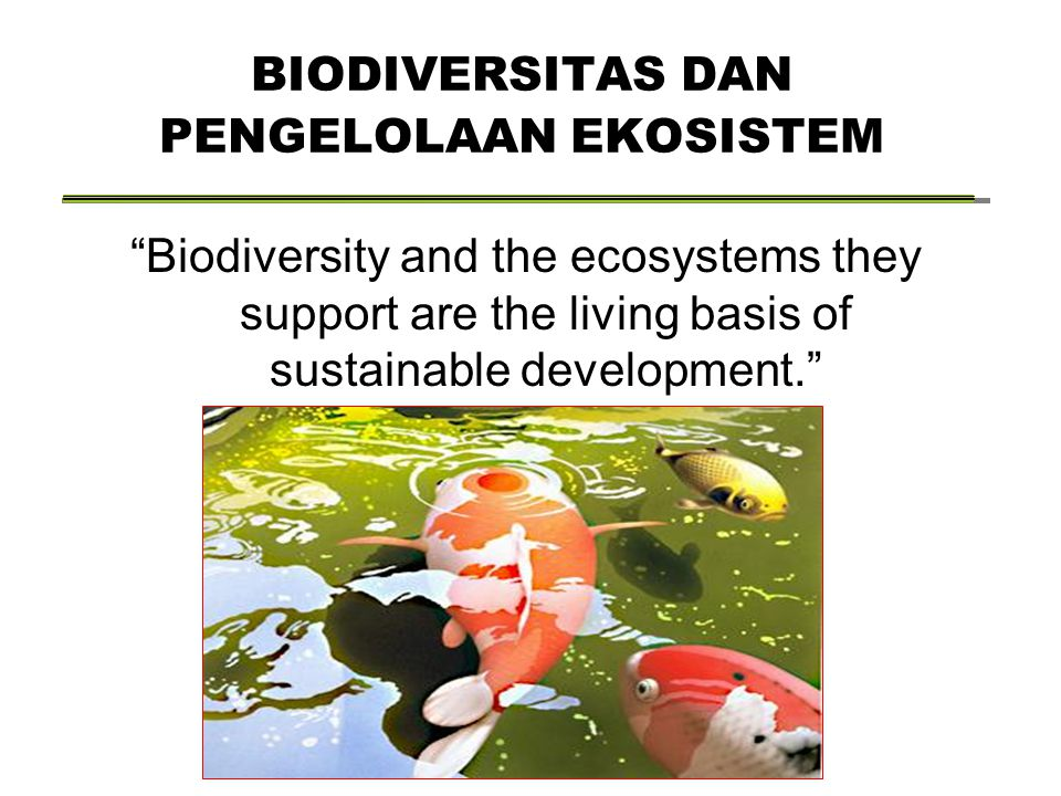 "BIODIVERSITAS DAN PENGELOLAAN EKOSISTEM ""Biodiversity and the ecosystems they support are the living basis of sustainable development."""