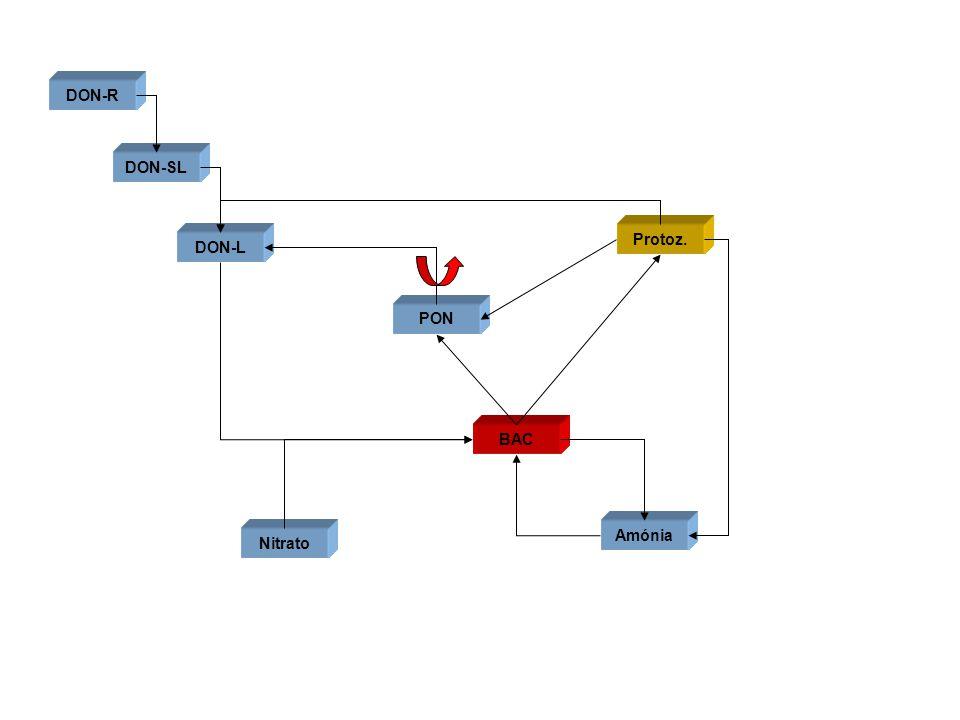 PON DON-L DON-SL DON-R Protoz. Amónia Nitrato
