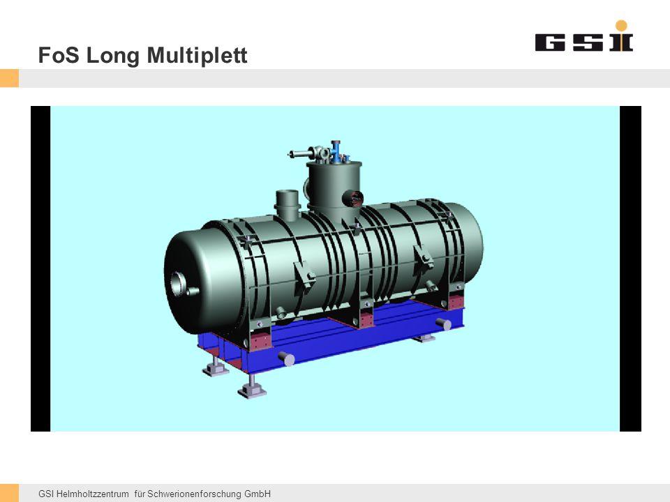 GSI Helmholtzzentrum für Schwerionenforschung GmbH FoS Long Multiplett