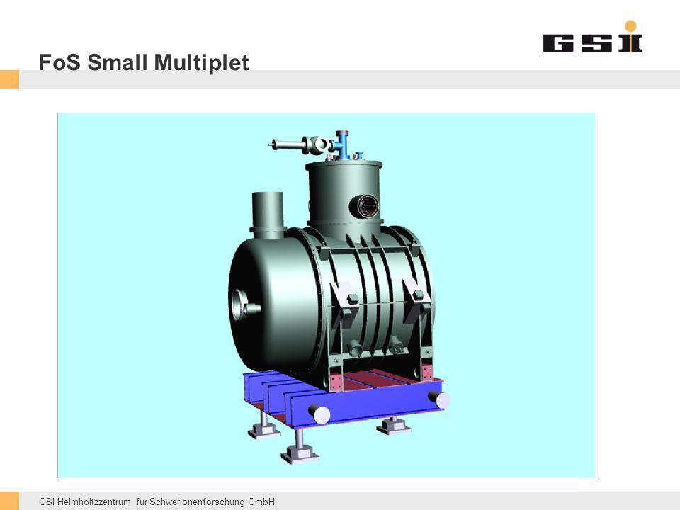 GSI Helmholtzzentrum für Schwerionenforschung GmbH FoS Small Multiplet