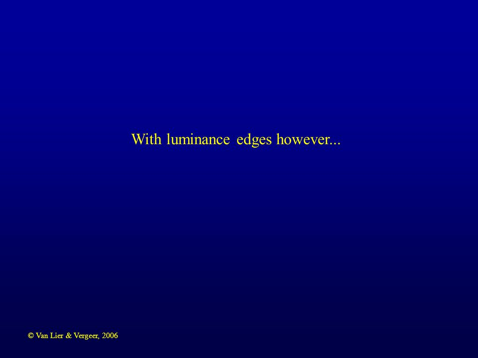 © Van Lier & Vergeer, 2006 A fuzzy grid. Light background, dark edges  light patches