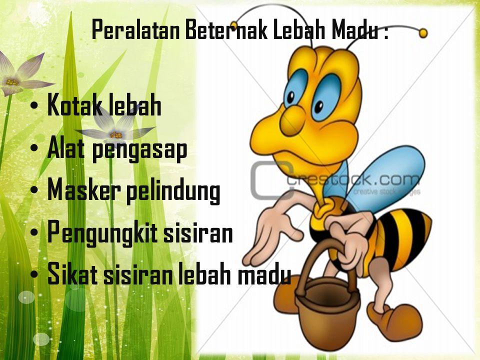 Peralatan Beternak Lebah Madu : Kotak lebah Alat pengasap Masker pelindung Pengungkit sisiran Sikat sisiran lebah madu