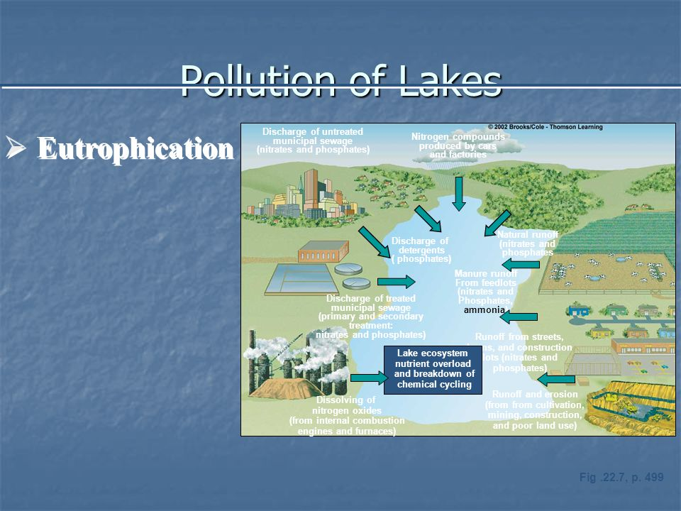 Pollution of Lakes  Eutrophication Discharge of untreated municipal sewage (nitrates and phosphates) Nitrogen compounds produced by cars and factories Discharge of treated municipal sewage (primary and secondary treatment: nitrates and phosphates) Discharge of detergents ( phosphates) Natural runoff (nitrates and phosphates Manure runoff From feedlots (nitrates and Phosphates, ammonia) Dissolving of nitrogen oxides (from internal combustion engines and furnaces) Runoff and erosion (from from cultivation, mining, construction, and poor land use) Runoff from streets, lawns, and construction lots (nitrates and phosphates) Lake ecosystem nutrient overload and breakdown of chemical cycling Fig.22.7, p.