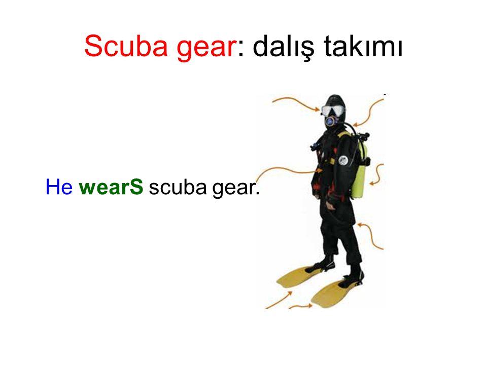 Scuba gear: dalış takımı He wearS scuba gear.