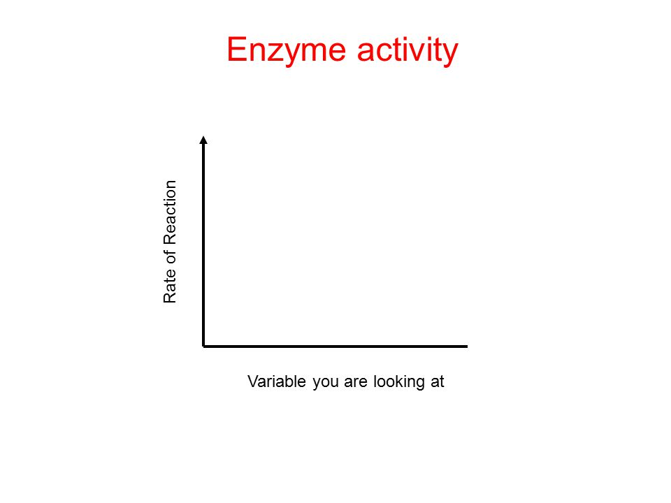 Rate of Reaction Enzyme activity Variable you are looking at