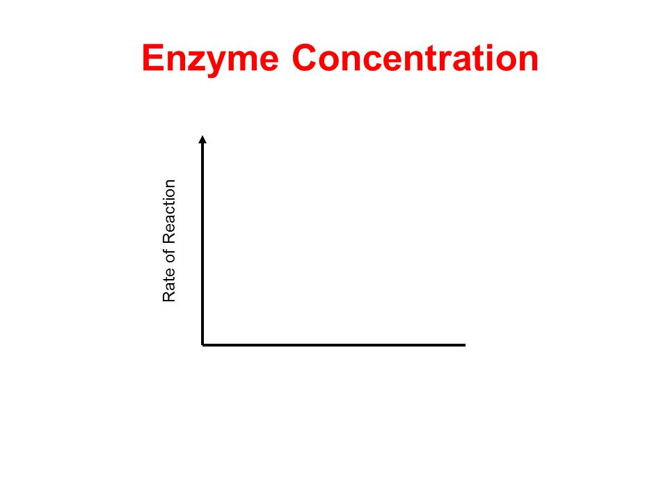 Rate of Reaction Enzyme Concentration