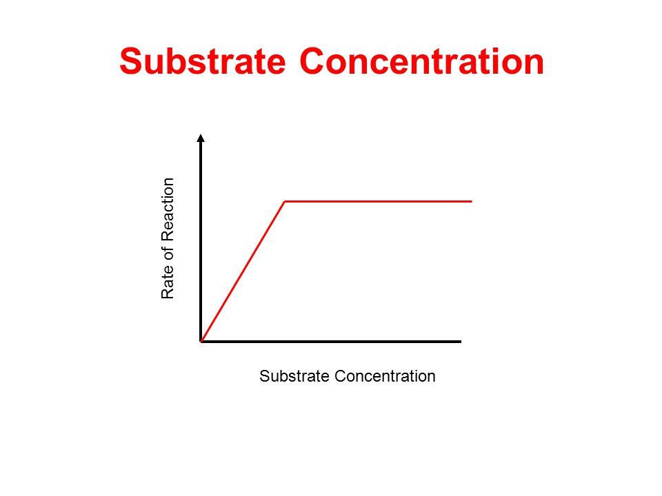 Rate of Reaction Substrate Concentration