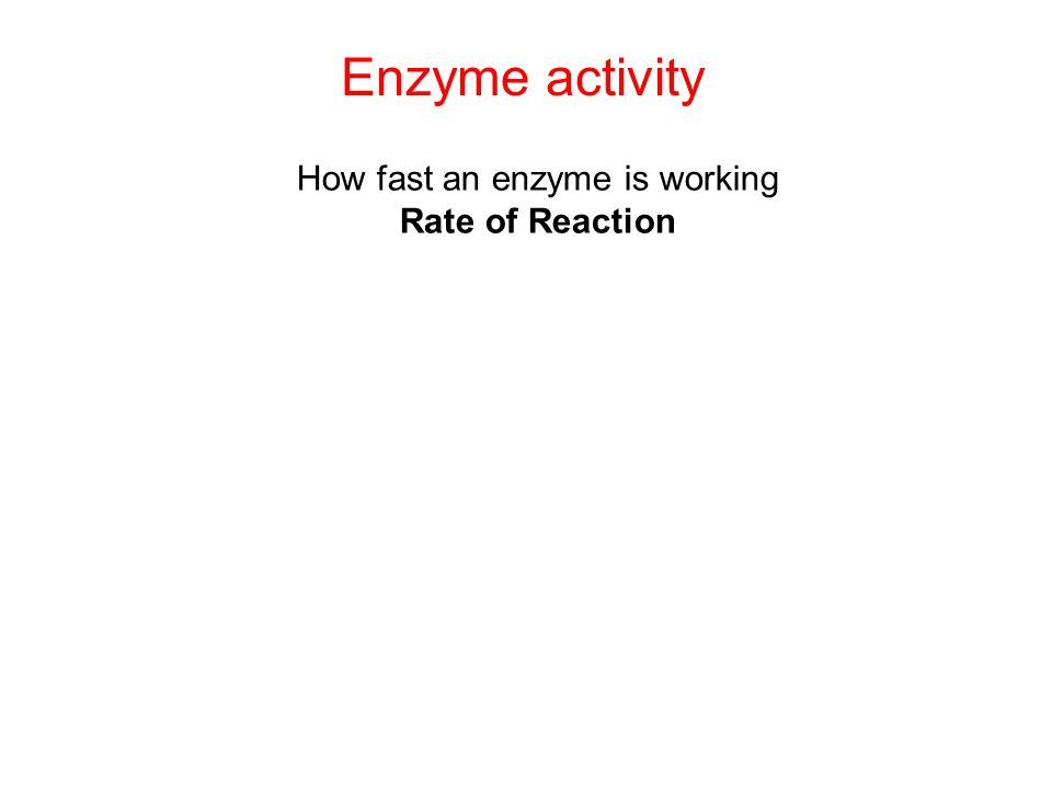 Enzyme activity How fast an enzyme is working Rate of Reaction