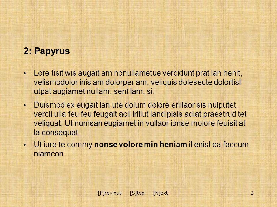 2[P]revious [S]top [N]ext 2: Papyrus Lore tisit wis augait am nonullametue vercidunt prat lan henit, velismodolor inis am dolorper am, veliquis dolesecte dolortisl utpat augiamet nullam, sent lam, si.