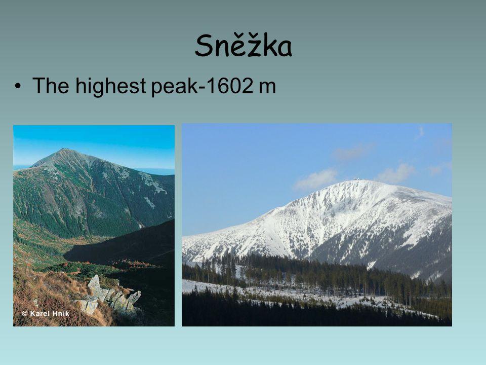 Sněžka The highest peak-1602 m