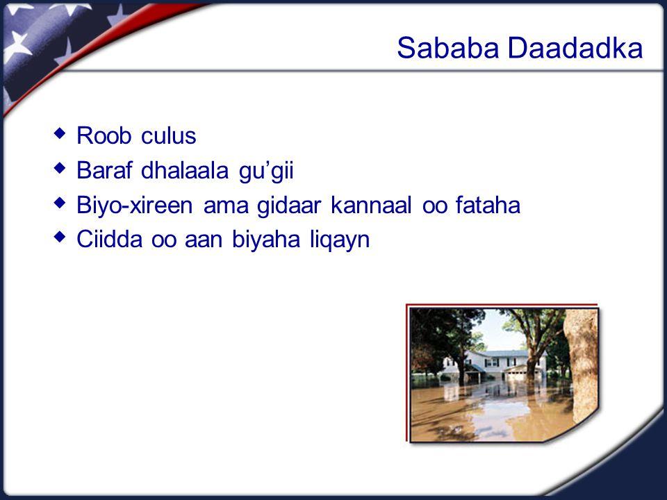 Sababa Daadadka  Roob culus  Baraf dhalaala gu'gii  Biyo-xireen ama gidaar kannaal oo fataha  Ciidda oo aan biyaha liqayn