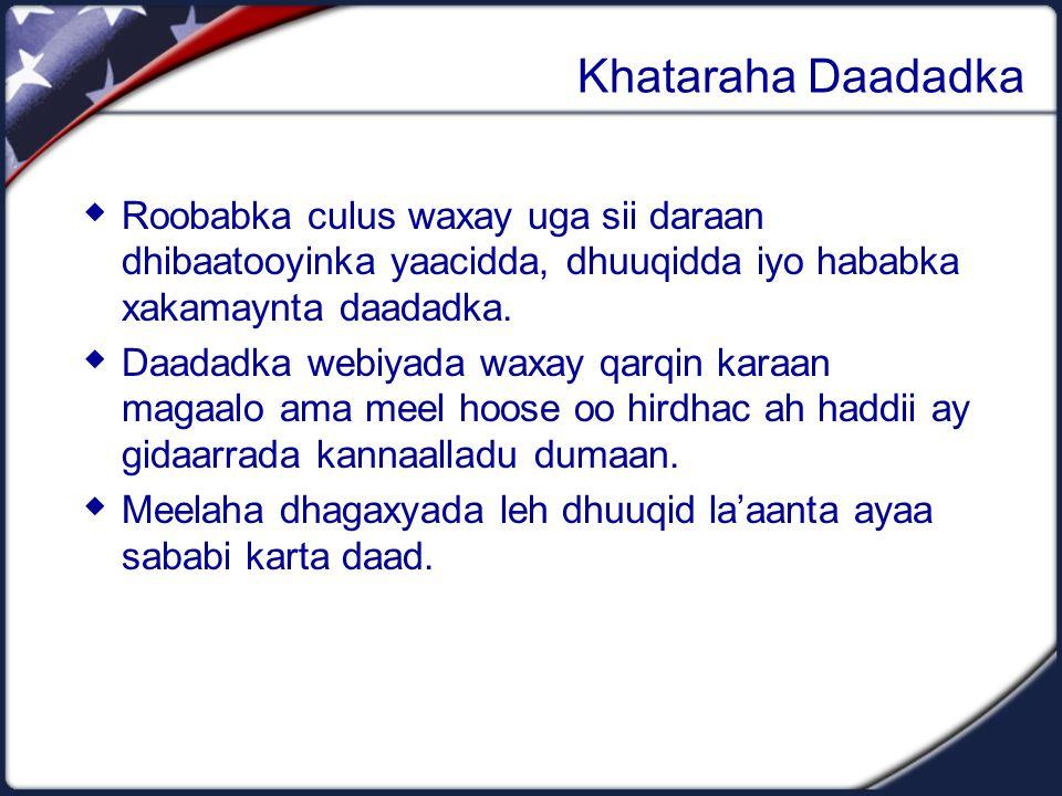 Khataraha Daadadka  Roobabka culus waxay uga sii daraan dhibaatooyinka yaacidda, dhuuqidda iyo hababka xakamaynta daadadka.