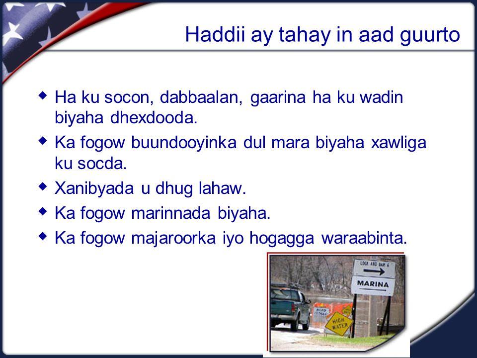 Haddii ay tahay in aad guurto  Ha ku socon, dabbaalan, gaarina ha ku wadin biyaha dhexdooda.  Ka fogow buundooyinka dul mara biyaha xawliga ku socda