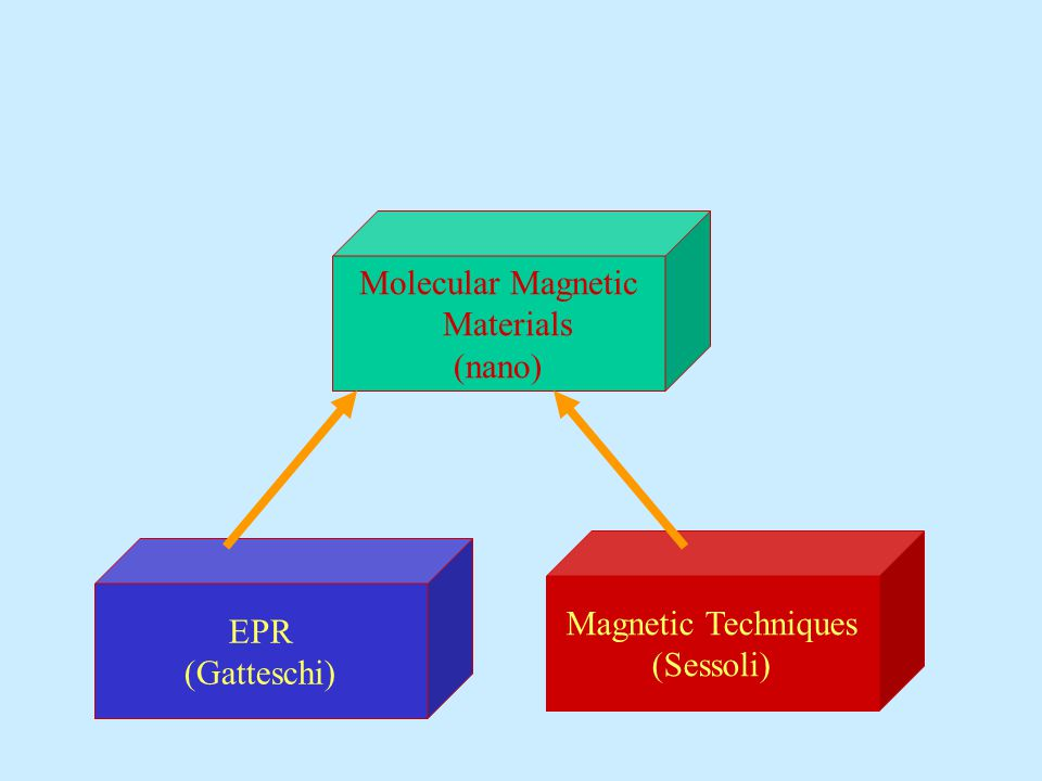 Molecular Magnetic Materials (nano) EPR (Gatteschi) Magnetic Techniques (Sessoli)