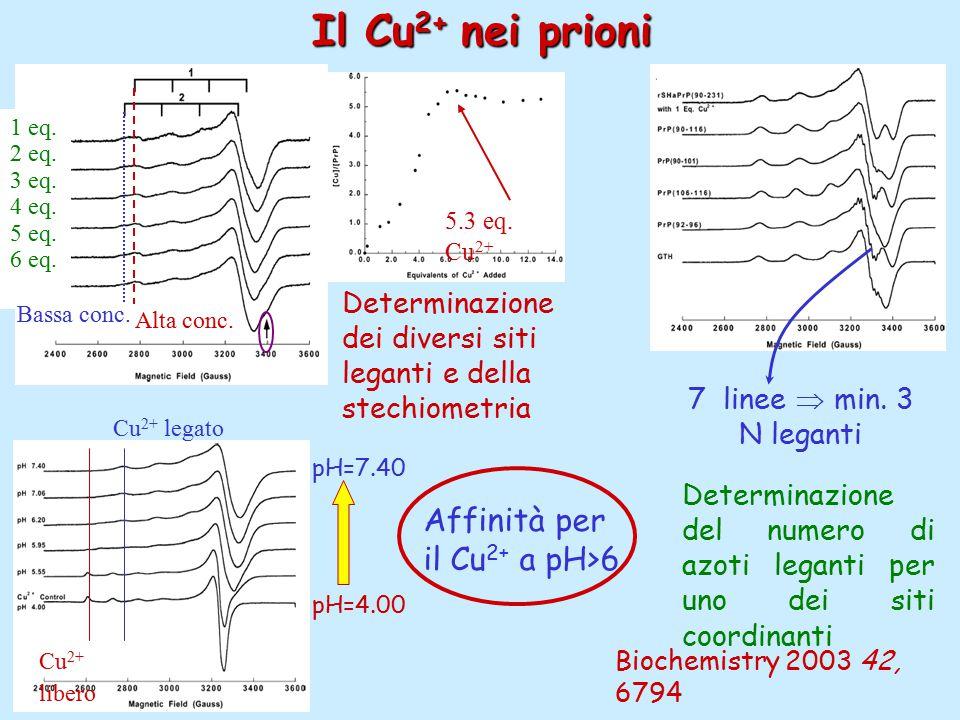 Il Cu 2+ nei prioni Determinazione dei diversi siti leganti e della stechiometria Determinazione del numero di azoti leganti per uno dei siti coordinanti Biochemistry 2003 42, 6794 1 eq.