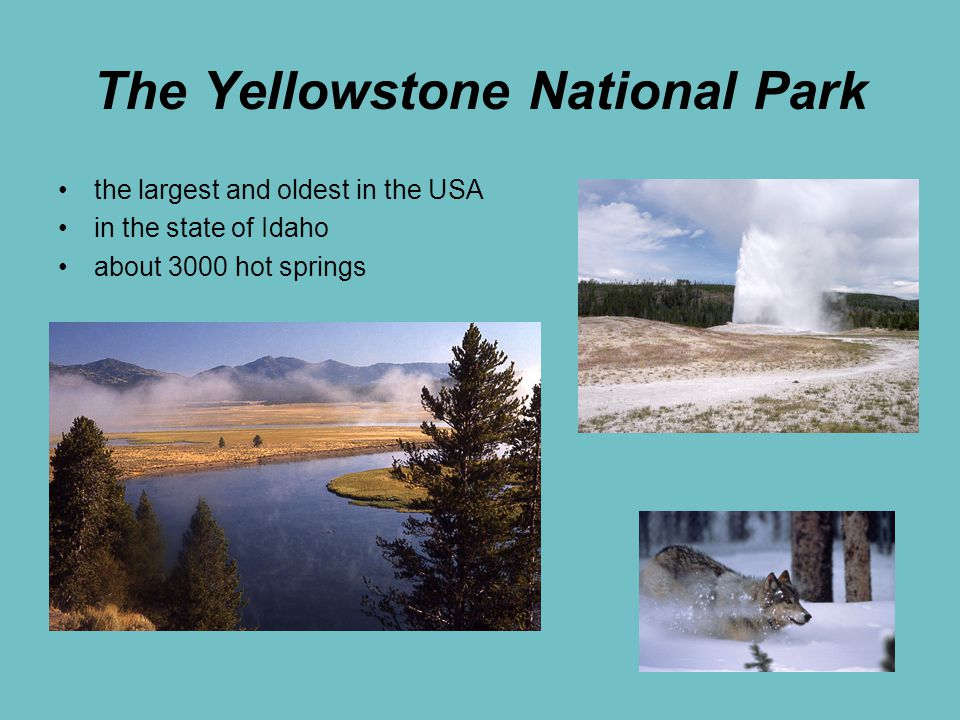The Yellowstone National Park the largest and oldest in the USA in the state of Idaho about 3000 hot springs