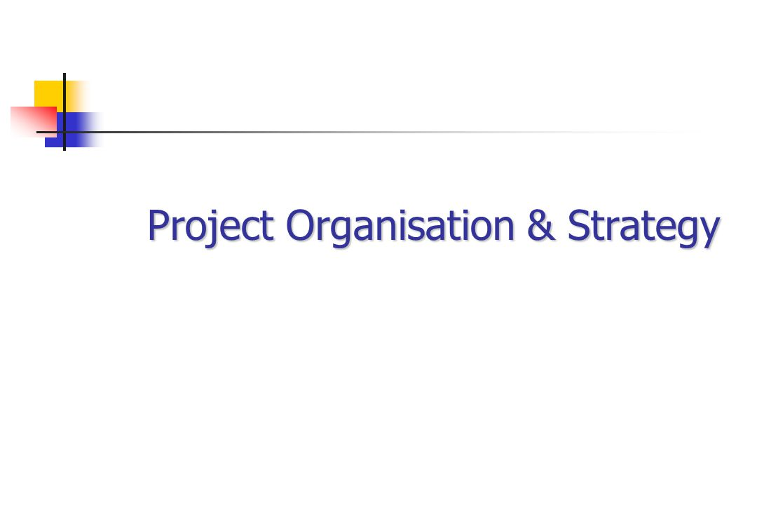 Project Organisation & Strategy
