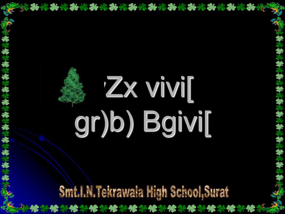 vZx vivi[ gr)b) Bgivi[