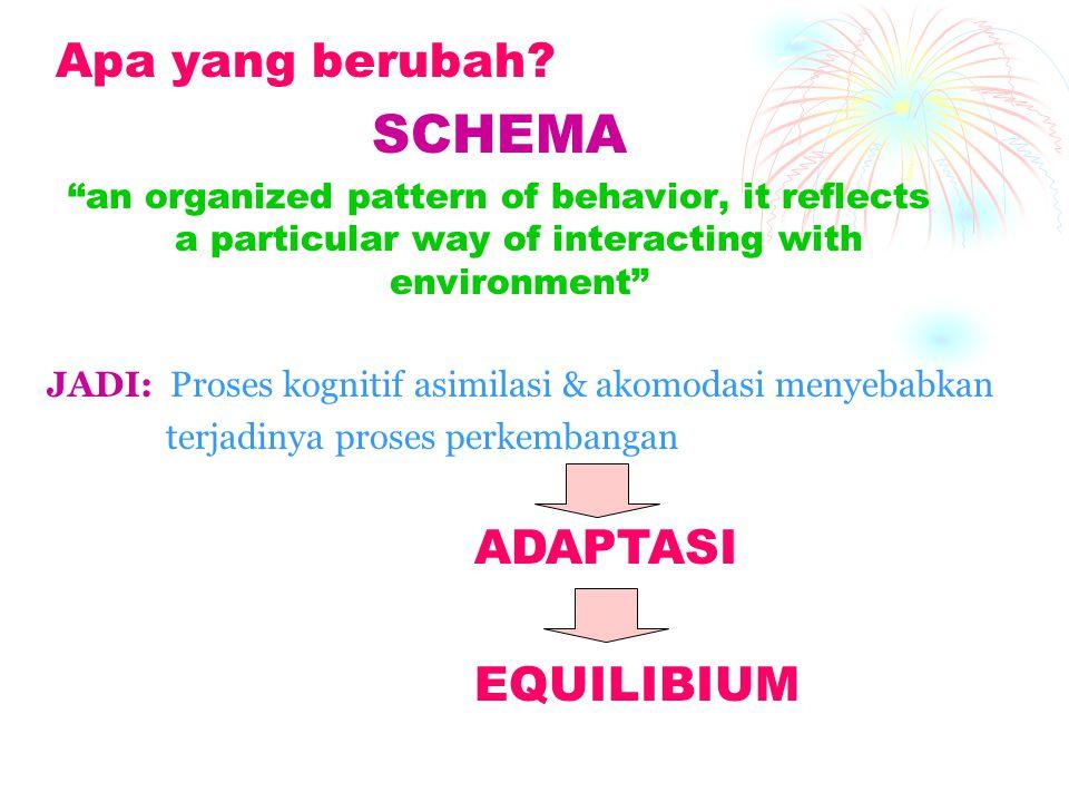 "Apa yang berubah? SCHEMA ""an organized pattern of behavior, it reflects a particular way of interacting with environment"" JADI: Proses kognitif asimil"