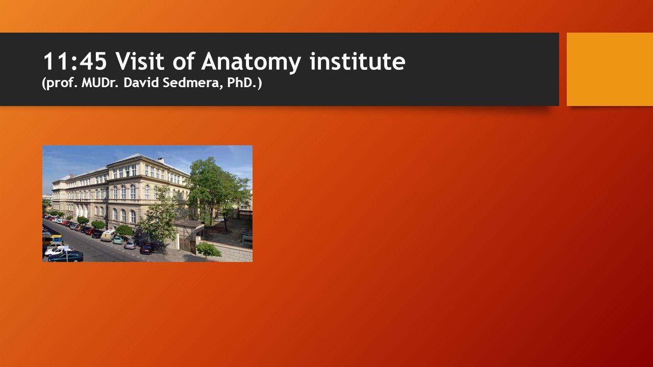 11:45 Visit of Anatomy institute (prof. MUDr. David Sedmera, PhD.)