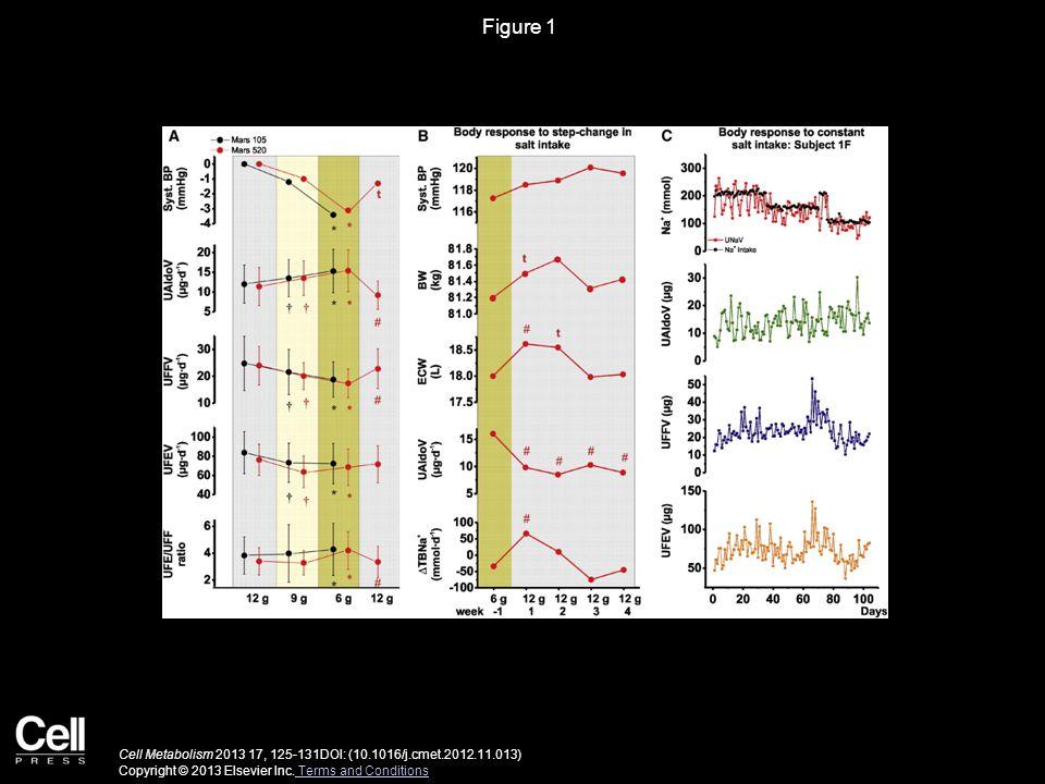 Figure 1 Cell Metabolism 2013 17, 125-131DOI: (10.1016/j.cmet.2012.11.013) Copyright © 2013 Elsevier Inc.