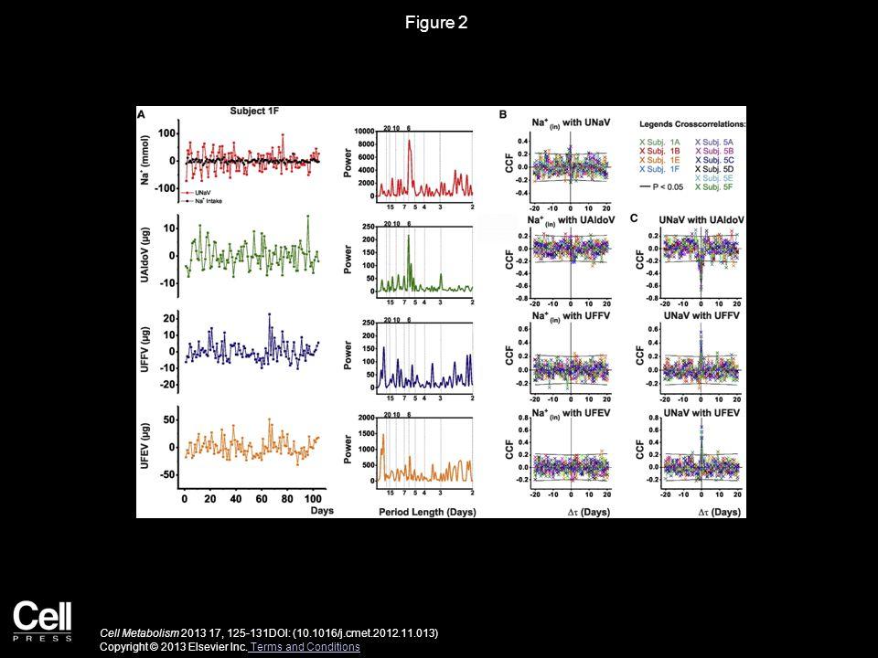 Figure 2 Cell Metabolism 2013 17, 125-131DOI: (10.1016/j.cmet.2012.11.013) Copyright © 2013 Elsevier Inc.